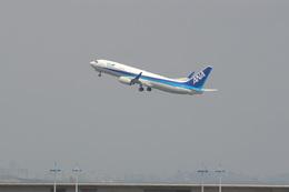 kanade/Ryo@S.O.R.A.さんが、羽田空港で撮影したエアーニッポン 737-881の航空フォト(飛行機 写真・画像)