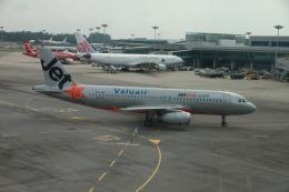 matsuさんが、シンガポール・チャンギ国際空港で撮影したジェットスター・アジア A320-232の航空フォト(写真)