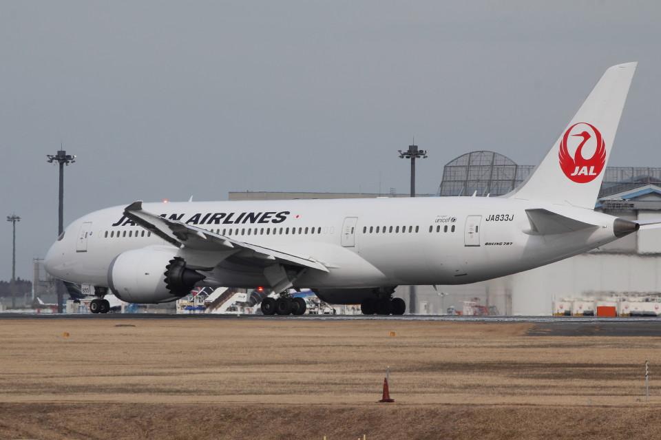 アイスコーヒーさんの日本航空 Boeing 787-8 Dreamliner (JA833J) 航空フォト