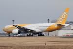 アイスコーヒーさんが、成田国際空港で撮影したスクート (〜2017) 777-212/ERの航空フォト(飛行機 写真・画像)