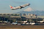 Kunikさんが、羽田空港で撮影した日本航空 737-846の航空フォト(写真)