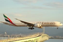 ぽんさんが、関西国際空港で撮影したエミレーツ航空 777-36N/ERの航空フォト(飛行機 写真・画像)