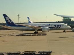 AIR JAPONさんが、羽田空港で撮影した全日空 787-8 Dreamlinerの航空フォト(飛行機 写真・画像)