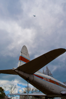 ちはやえきさんが、貝塚公園で撮影した日本国内航空 DH.114 Heron 1Bの航空フォト(飛行機 写真・画像)
