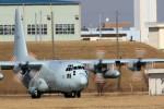 take_2014さんが、厚木飛行場で撮影した海上自衛隊 C-130Rの航空フォト(写真)