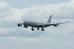北の熊さんが、新千歳空港で撮影したハイフライ航空 A340-313Xの航空フォト(飛行機 写真・画像)
