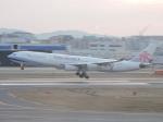 わたくんさんが、福岡空港で撮影したチャイナエアライン A340-313Xの航空フォト(写真)