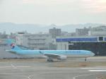 わたくんさんが、福岡空港で撮影した大韓航空 A330-323Xの航空フォト(写真)