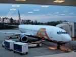 tsubasa0624さんが、オーランド国際空港で撮影したATA航空 737-83Nの航空フォト(飛行機 写真・画像)
