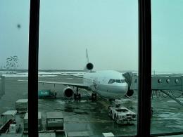 tsubasa0624さんが、新千歳空港で撮影した日本航空 MD-11の航空フォト(写真)