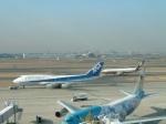 tsubasa0624さんが、羽田空港で撮影した全日空 747-481の航空フォト(写真)