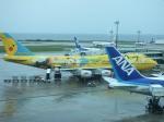 tsubasa0624さんが、那覇空港で撮影した全日空 747-481(D)の航空フォト(写真)