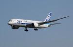 アイスコーヒーさんが、成田国際空港で撮影した全日空 787-8 Dreamlinerの航空フォト(飛行機 写真・画像)