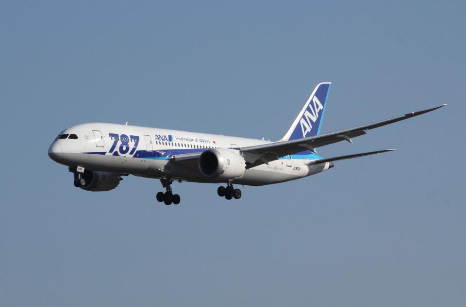 アイスコーヒーさんの全日空 Boeing 787-8 Dreamliner (JA808A) 航空フォト