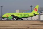 アイスコーヒーさんが、成田国際空港で撮影したS7航空 A320-214の航空フォト(写真)