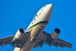 パンダさんが、成田国際空港で撮影したパキスタン国際航空 A310-324/ETの航空フォト(飛行機 写真・画像)
