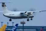 パンダさんが、成田国際空港で撮影した国土交通省 航空局 DHC-8-315Q Dash 8の航空フォト(飛行機 写真・画像)