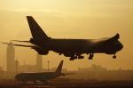 ふらっぺろんさんが、成田国際空港で撮影した日本貨物航空 747-8KZF/SCDの航空フォト(写真)