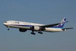 アイスコーヒーさんが、成田国際空港で撮影した全日空 777-381/ERの航空フォト(写真)