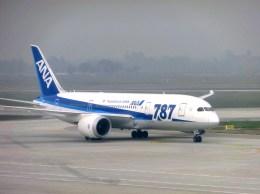 ぺペロンチさんが、ノイバイ国際空港で撮影した全日空 787-8 Dreamlinerの航空フォト(飛行機 写真・画像)