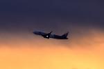 tsubasa0624さんが、羽田空港で撮影した香港エクスプレス A320-232の航空フォト(飛行機 写真・画像)