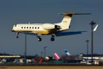 パンダさんが、成田国際空港で撮影したMGMミラージュ G-V Gulfstream Vの航空フォト(写真)