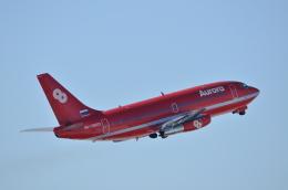 くれいんさんが、新千歳空港で撮影したオーロラ 737-2J8/Advの航空フォト(飛行機 写真・画像)