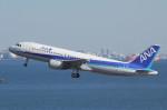 アイスコーヒーさんが、羽田空港で撮影した全日空 A320-211の航空フォト(写真)