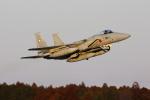 toshirouさんが、茨城空港で撮影した航空自衛隊 F-15J Eagleの航空フォト(写真)