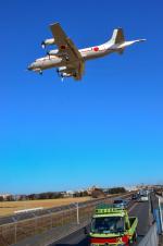 パンダさんが、厚木飛行場で撮影した海上自衛隊 UP-3Cの航空フォト(写真)