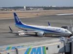 もみじんさんが、宮崎空港で撮影した全日空 737-881の航空フォト(写真)