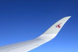安芸あすかさんが、アンリ・コアンダ国際空港で撮影したカタール航空 A350-941の航空フォト(飛行機 写真・画像)