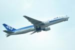 tsubasa0624さんが、福岡空港で撮影した全日空 777-281の航空フォト(写真)