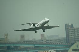 tsubasa0624さんが、福岡空港で撮影した国土交通省 航空局 G-IV Gulfstream IV-SPの航空フォト(写真)