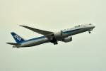 tsubasa0624さんが、福岡空港で撮影した全日空 787-9の航空フォト(写真)