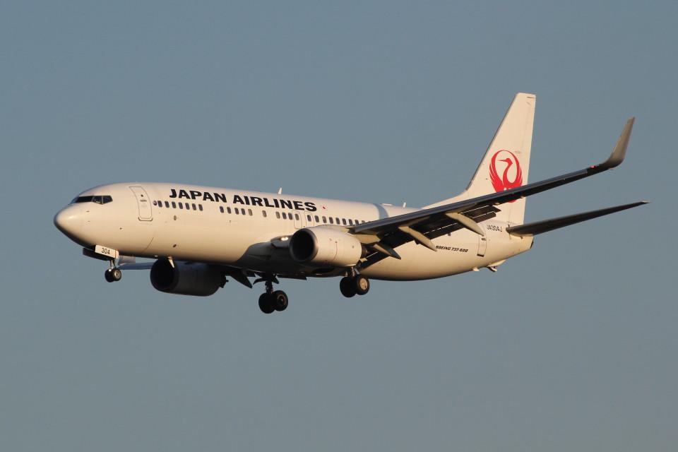 アイスコーヒーさんの日本航空 Boeing 737-800 (JA304J) 航空フォト