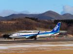 malkonenさんが、函館空港で撮影した全日空 737-881の航空フォト(写真)