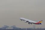 take_2014さんが、羽田空港で撮影したアシアナ航空 A330-323Xの航空フォト(写真)
