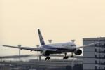 take_2014さんが、羽田空港で撮影した全日空 777-281の航空フォト(写真)