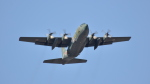 spockerさんが、習志野演習場で撮影した航空自衛隊 C-130H Herculesの航空フォト(写真)