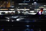 tsubasa0624さんが、羽田空港で撮影したハワイアン航空 A330-243の航空フォト(飛行機 写真・画像)