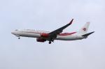 しかばねさんが、ロンドン・ヒースロー空港で撮影したアルジェリア航空 737-8D6の航空フォト(写真)