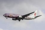 こだしさんが、成田国際空港で撮影した中国国際航空 737-86Nの航空フォト(写真)