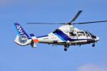 Dojalanaさんが、函館空港で撮影したオールニッポンヘリコプター AS365N2 Dauphin 2の航空フォト(飛行機 写真・画像)