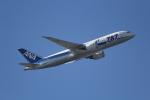 ANA744Foreverさんが、羽田空港で撮影した全日空 787-8 Dreamlinerの航空フォト(写真)