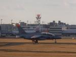 あしゅーさんが、福岡空港で撮影した航空自衛隊 T-4の航空フォト(飛行機 写真・画像)