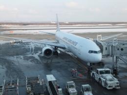 いおんさんが、新千歳空港で撮影した日本航空 777-246の航空フォト(飛行機 写真・画像)