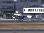 あしゅーさんが、福岡空港で撮影したオールニッポンヘリコプター AS365N2 Dauphin 2の航空フォト(飛行機 写真・画像)