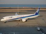 まっつーさんが、羽田空港で撮影した全日空 787-9の航空フォト(写真)