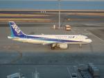 まっつーさんが、羽田空港で撮影した全日空 A320-211の航空フォト(写真)